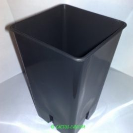 Горщики квадратні (10 шт.) для кактусів MZ Forma KW 12x12x19,5
